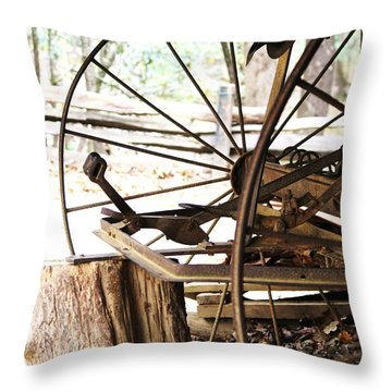 Throw Pillow featuring the photograph Woody And Wheely by Faith Williams