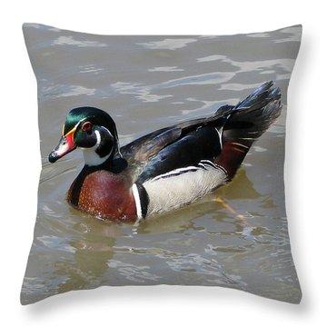 Wood Duck Throw Pillow by John Freidenberg