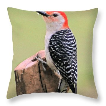 Woody Throw Pillow by Marion Johnson