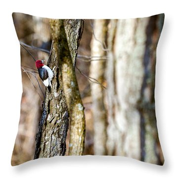 Throw Pillow featuring the photograph Woody by Sennie Pierson