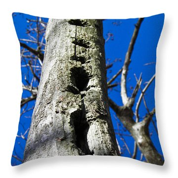 Throw Pillow featuring the photograph Woody's Paradise by Nick Kirby