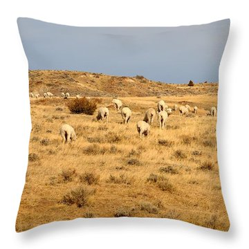 Wool You Sheep With Me Throw Pillow