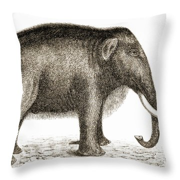 Woolly Mammoth Throw Pillow by British Library