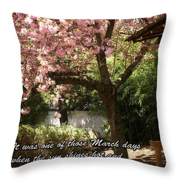 Words Of The Seasons Throw Pillow