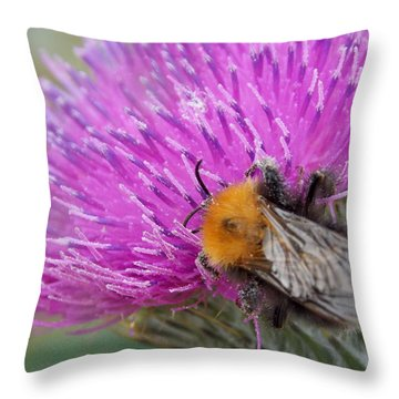 Working Hard For A Living II Throw Pillow