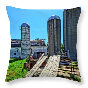 2x4 Throw Pillows