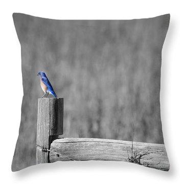 World Of Blue Throw Pillow