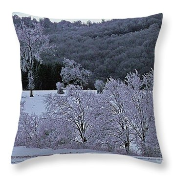 Throw Pillow featuring the photograph World Of Jack Frost by Christian Mattison