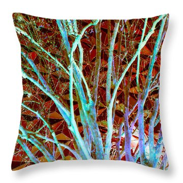 Throw Pillow featuring the photograph World View by Ann Johndro-Collins