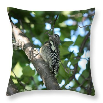 Worn Out Woodpecker Throw Pillow