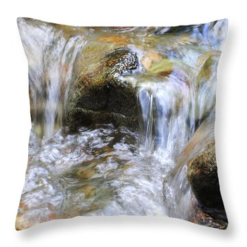 Worn Through Time Throw Pillow