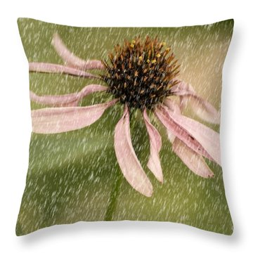 Wouldn't It Be Loverly Throw Pillow by Lois Bryan