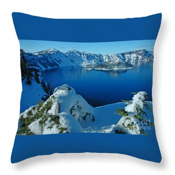 Throw Pillow featuring the photograph WOW by Nick  Boren