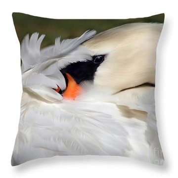 Wrapped In Feathers Throw Pillow