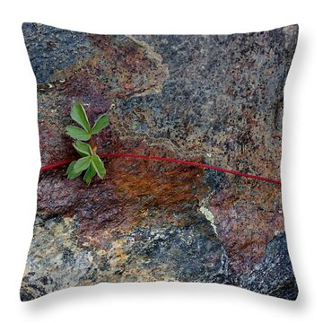 Wrapped Rock Throw Pillow