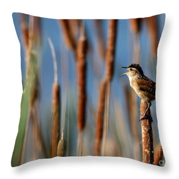 Wren Singing Throw Pillow