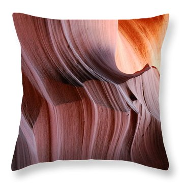 Wrinkles  Throw Pillow by Catherine Lau