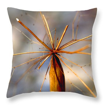 Throw Pillow featuring the photograph Wth? by Joe Schofield
