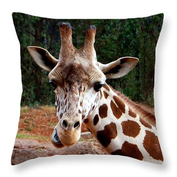 Throw Pillow featuring the photograph Wuz Up Dude by Nancy Bradley
