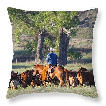 Wyoming Country Throw Pillow by Diane Bohna