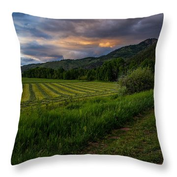 Wyoming Pastures Throw Pillow