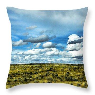 Wyoming Plains Throw Pillow
