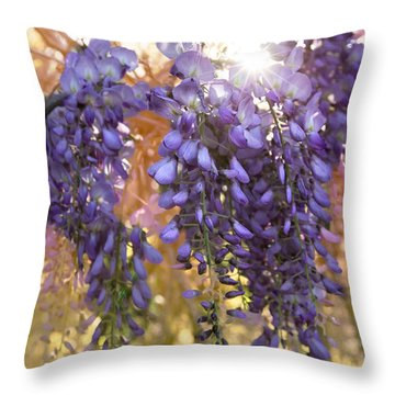 Wysteria Throw Pillow by Debra and Dave Vanderlaan