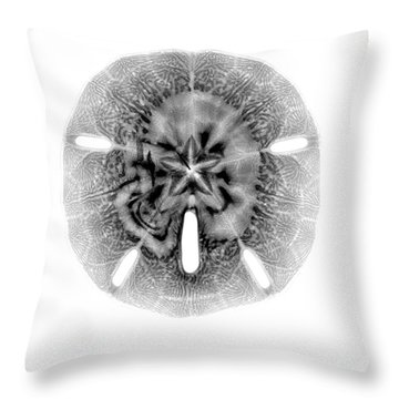 X-ray Of Sand Dollar Throw Pillow by Bert Myers