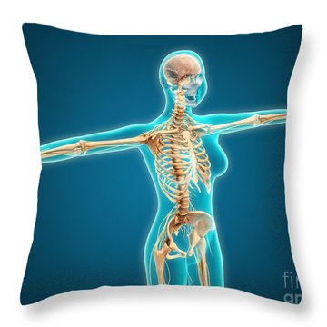 X-ray View Of Female Body Showing Throw Pillow by Stocktrek Images