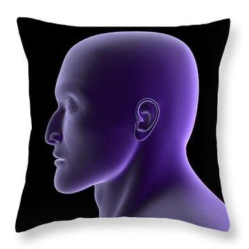 X-ray View Of Human Face, Profile View Throw Pillow by Stocktrek Images