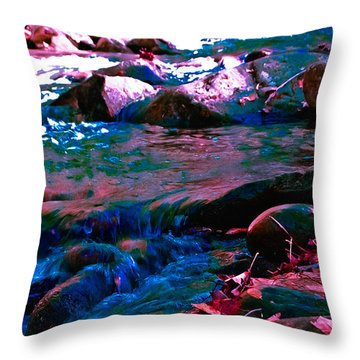 Xanadu Throw Pillow by DigiArt Diaries by Vicky B Fuller