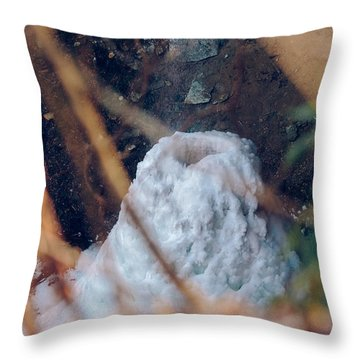 Yahoo Falls Frozen 2 Throw Pillow