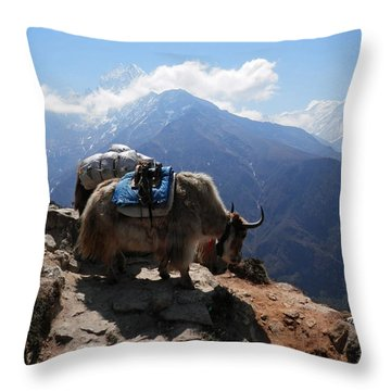 Yaks 1a Throw Pillow