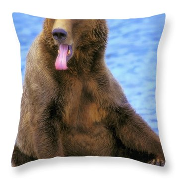 Yawning Grizzly Bear Sitting By Waters Throw Pillow by Thomas Kitchin & Victoria Hurst