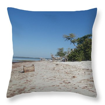 Throw Pillow featuring the photograph Ye Olde Pirates Chest by Robert Nickologianis