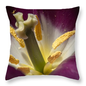 Yeah Yeah Throw Pillow by Wade Brooks