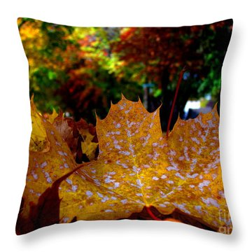 Year After Year Throw Pillow by Greg Patzer