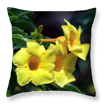 Yellow Allamanda Throw Pillow by Teresa Zieba