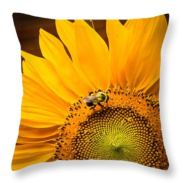 Yellow And Black Throw Pillow by Sara Frank