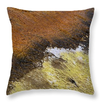 Throw Pillow featuring the photograph Yellow And Orange Converging by Nadalyn Larsen