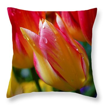 Yellow And Pink Tulips Throw Pillow by Rona Black