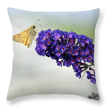 Yellow And Purple Throw Pillow by Kenny Francis