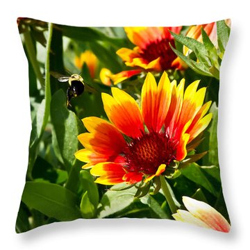 Yellow And Red Gaillardias And Bee Throw Pillow