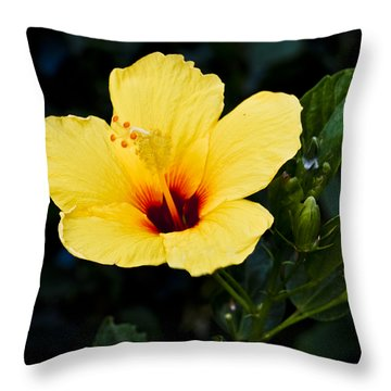 Yellow And Red Hibiscus Throw Pillow