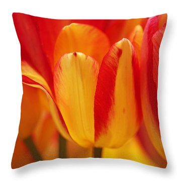 Yellow And Red Striped Tulips Throw Pillow by Rona Black