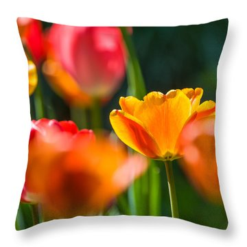 Yellow And Red Throw Pillow by Trevor Chriss