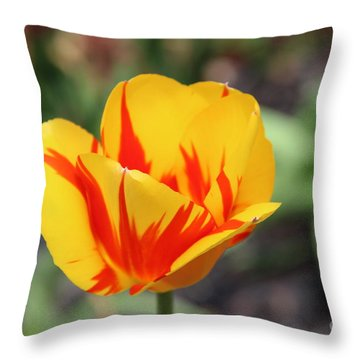 Yellow And Red Tulip 2 Throw Pillow
