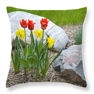 Yellow And Red Tulips With Two Rocks Throw Pillow