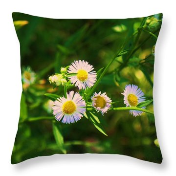Yellow And White Dasies Throw Pillow by Eric  Schiabor