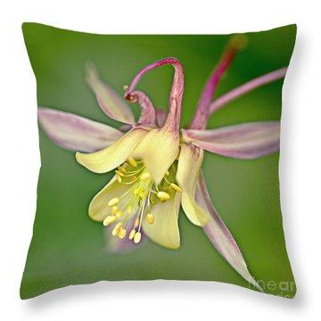 Yellow Aquilegia Bloom Throw Pillow by Heiko Koehrer-Wagner